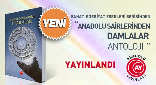 Anadolu Şairlerinden Damlalar (Antoloji) Kitabı Yayınlandı